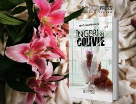 Îngeri în colivie - Ion Cristea Marilena